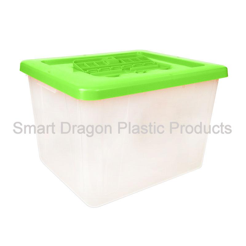 product-SMART DRAGON-img