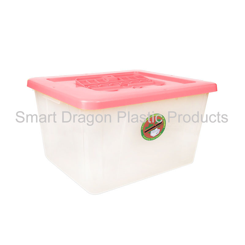 product-SMART DRAGON-img